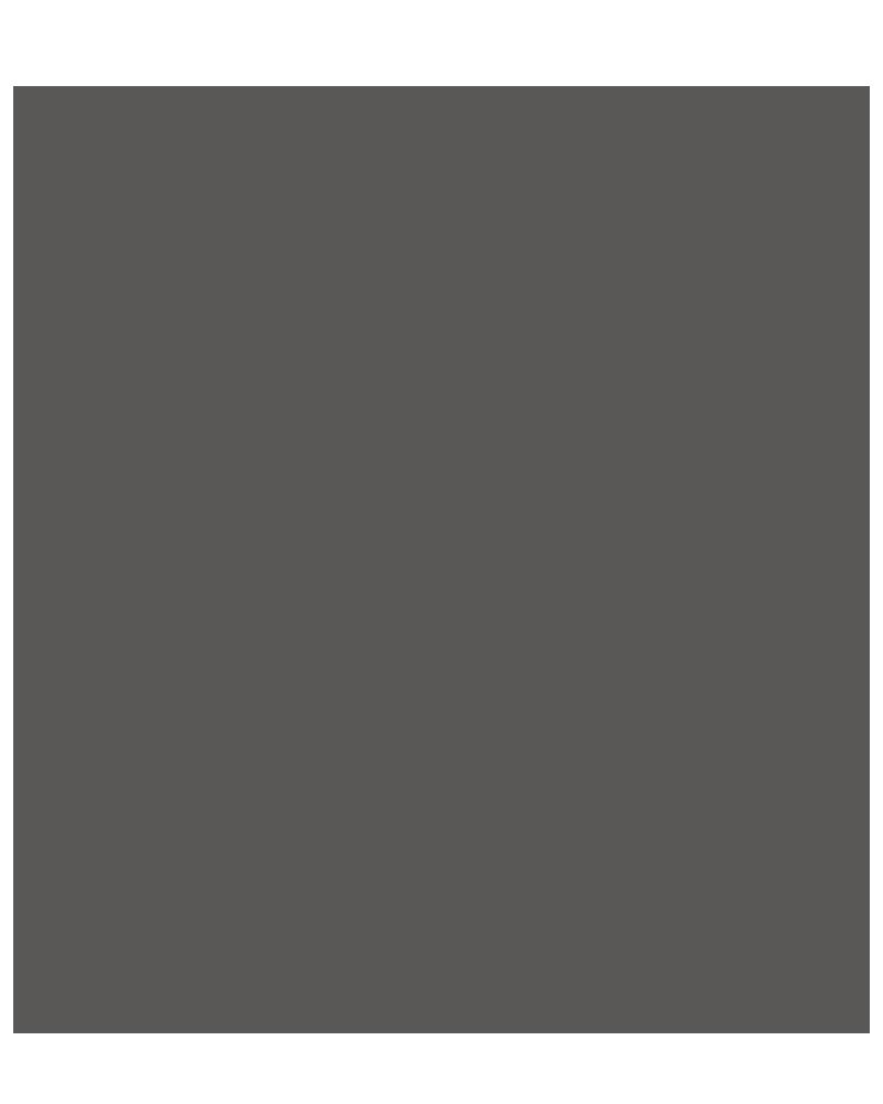 GRIS OSCURO