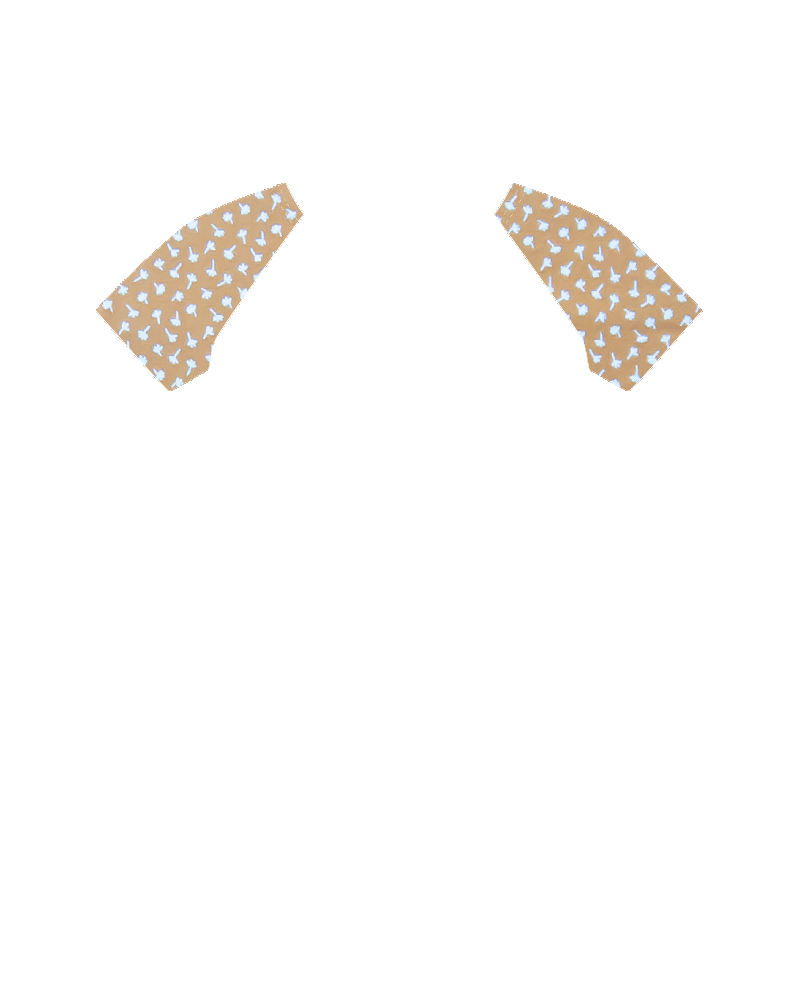 DIENTE LEON